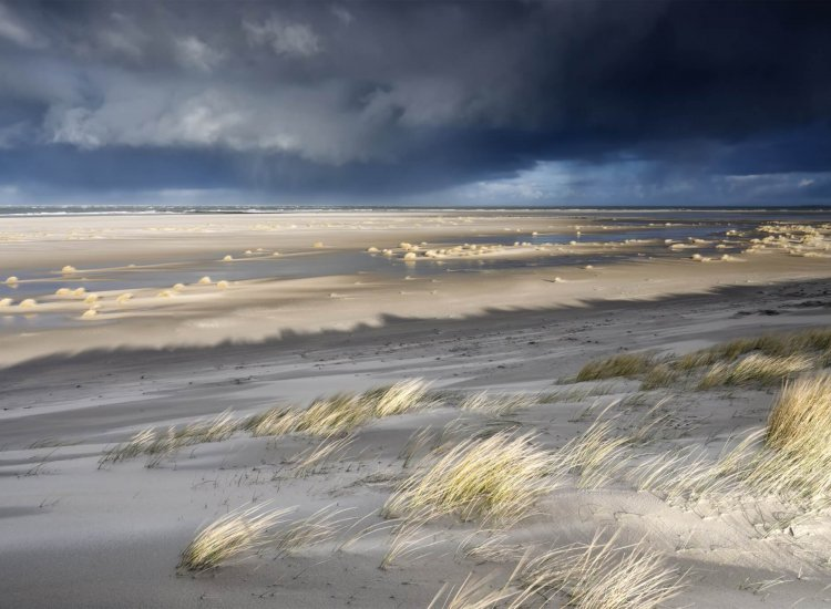 view on North sea coast on stormy sunny day